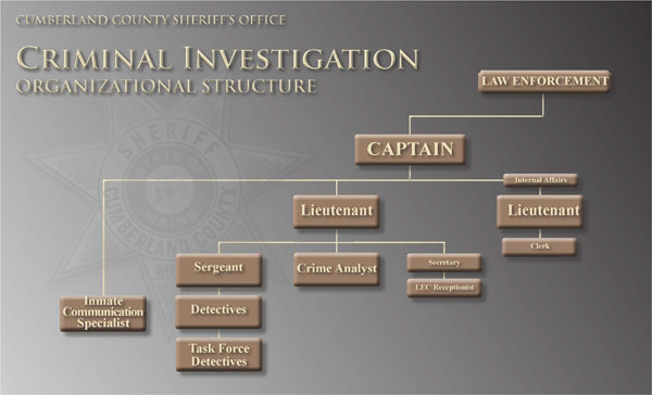 Cumberland County Sheriff's Office Criminal Investigations Division Organizational Chart