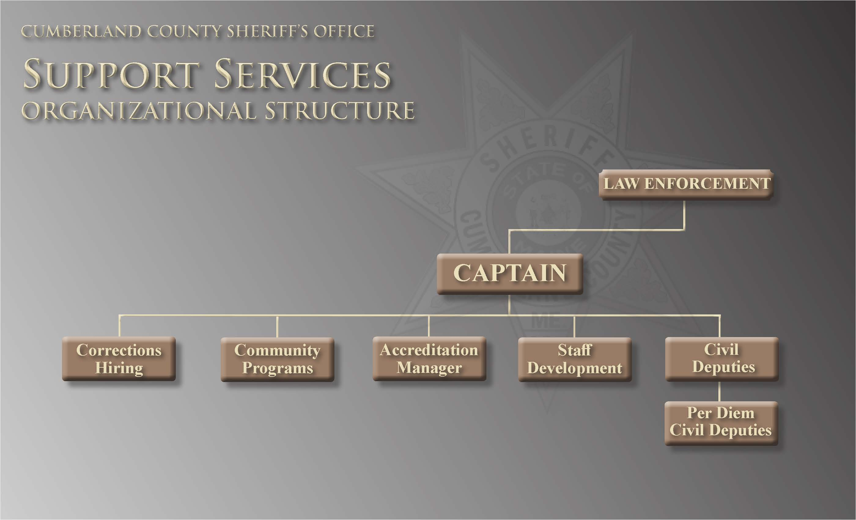 CCSO Organization Chart Support Services Division